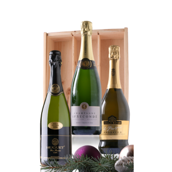Mousserende wijnen (Champagne, Cava & Prosecco) Eindejaarsgeschenk