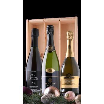Mousserende wijnen Cava, Prosecco, Bugey Eindejaarsgeschenk