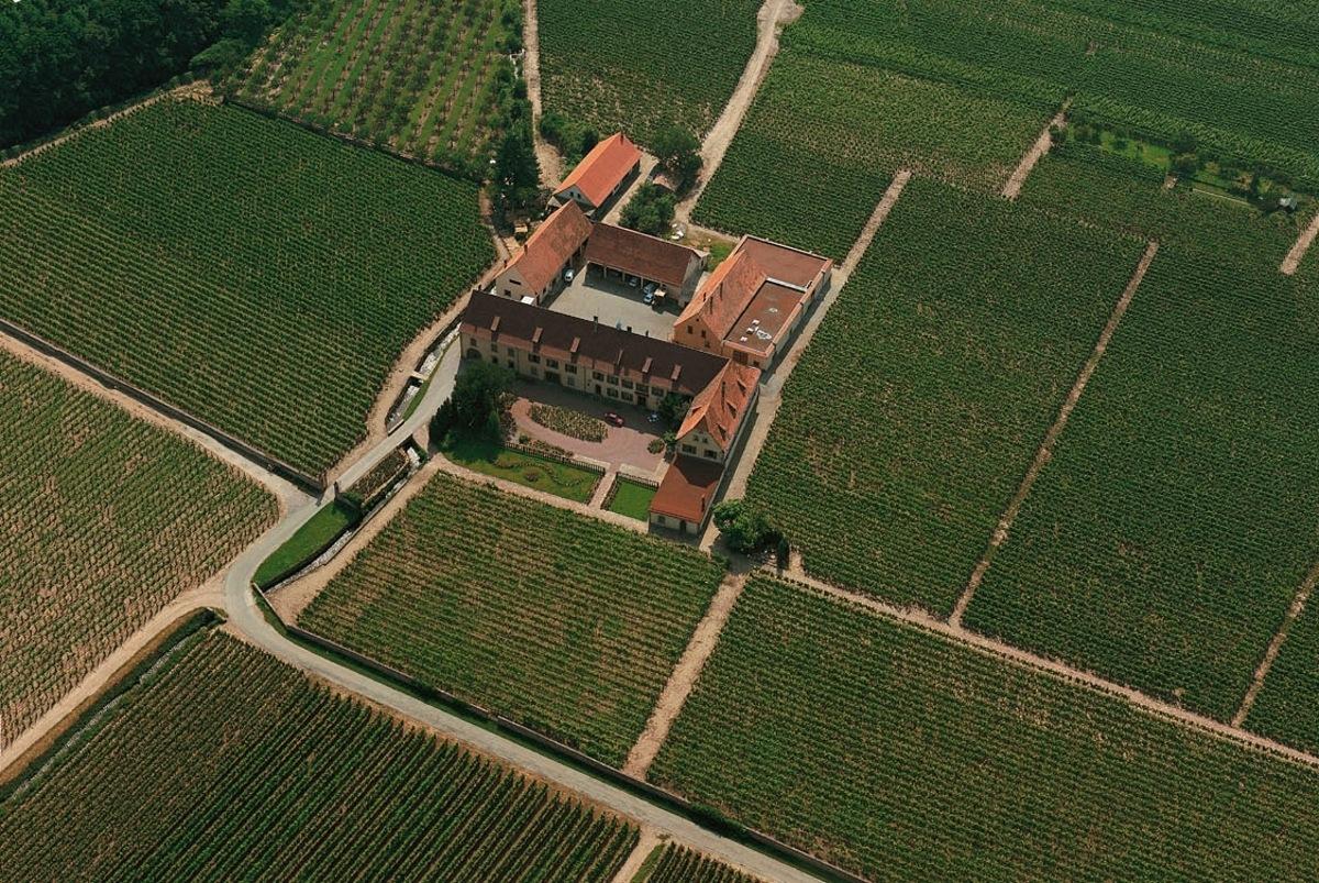 Domaine Weinbach vanuit de lucht